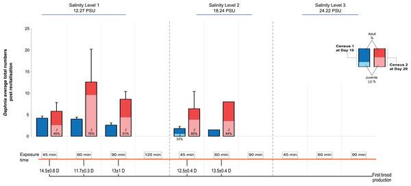 Post-revitalisation Daphnia population parameters across treatments.