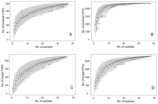 Species accumulation curves for bacterial T-RFs (A) and OTUs (B), and fungal T-RFs (C) and OTUs (D).