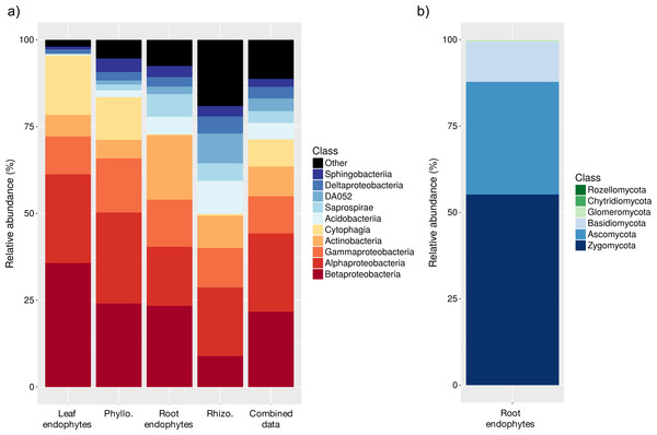 Relative abundances (%) of bacterial (A) and fungal (B) taxa.