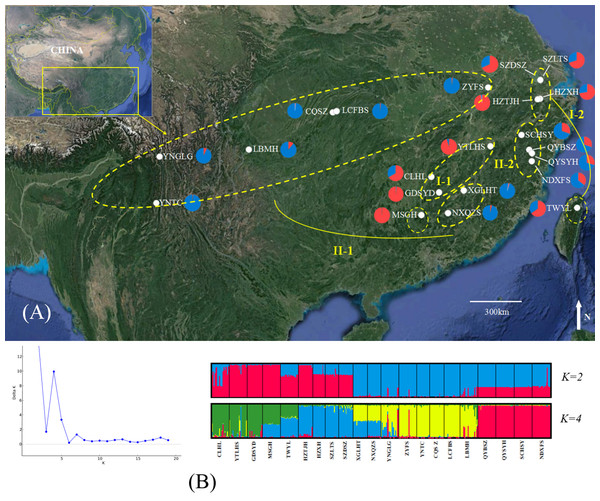 Genetic structure of B. schreberi populations in China.