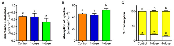 Effect of PVF from the eggs of Pomacea maculata on mice intestinal permeability.