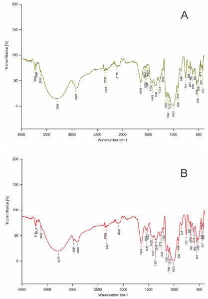 FTIR spectrum of EPS produced.