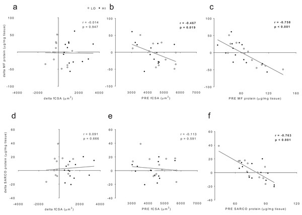 No significant association existed between delta (POST—PRE) myofibrillar (MF) protein concentrations and delta muscle fiber cross sectional area (fCSA) levels (A).