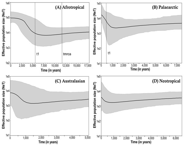 Bayesian skyline plot (BSP) estimate of Medfly demographic history for the biogeographic regions (A) Afrotropical; (B) Palaearctic; (C) Australasian and (D) Neotropical.