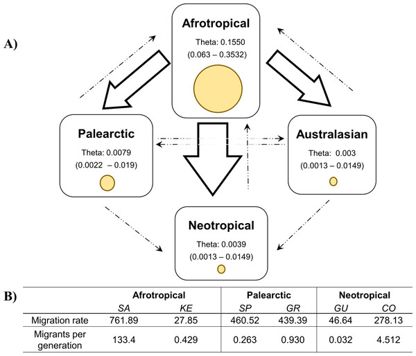 Values of theta and migration between the biogeographical regions.