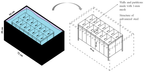 Schematic representation of the isolation apparatus used in Experiment 2.