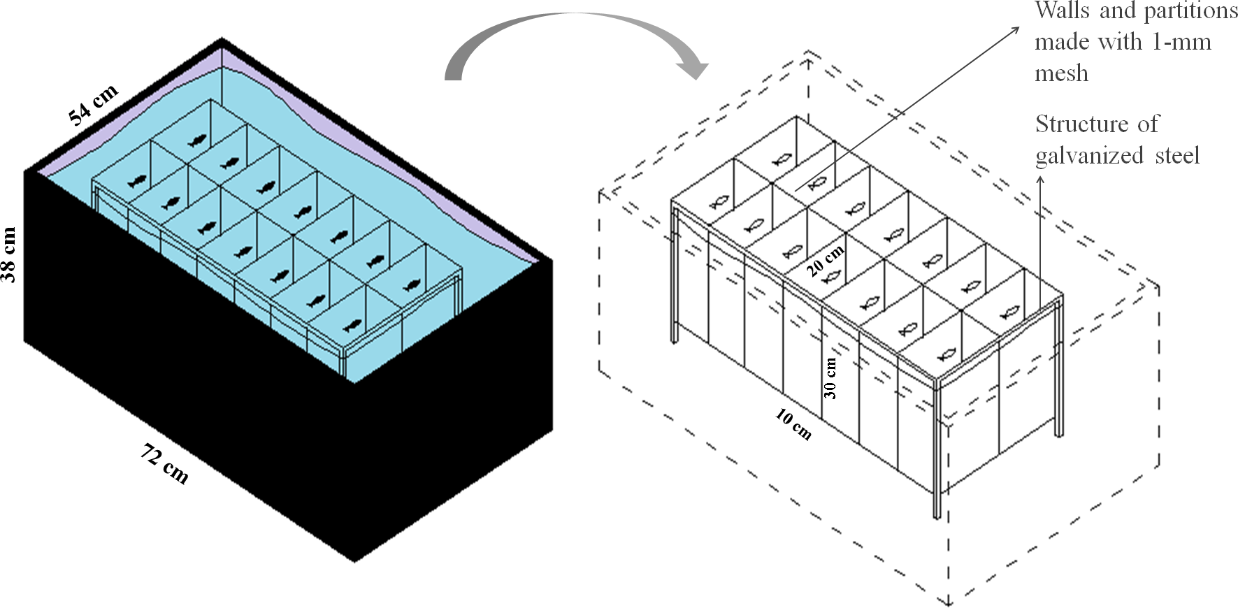 feeding regimen modulates zefish behavior [peerj] on taylor dunn  accelerator schematic,