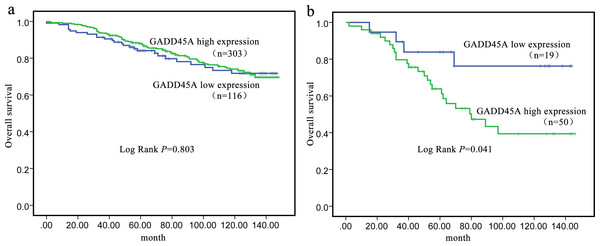 Kaplan–Meier curve of overall survival in relation to GADD45A protein expression.