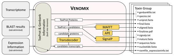 Venomix Pipeline Outline.