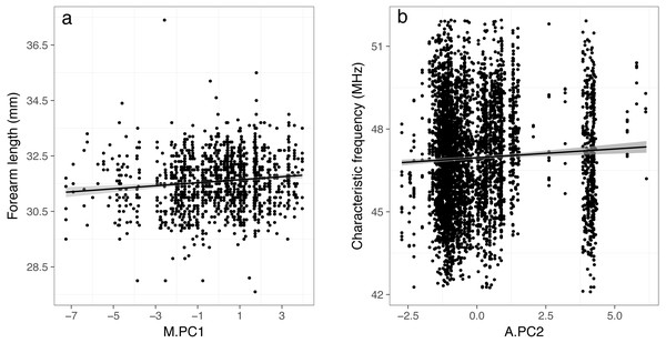 Relationships between forearm length (A) and characteristic frequency (B) and the principal components resulting from PCA (PC1 and PC2) that were found to be significant in linear mixed-effects models.