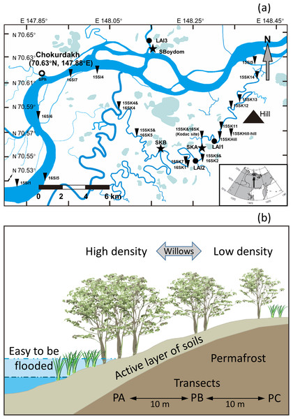 Sampling sites and schematic illustration of a transect.