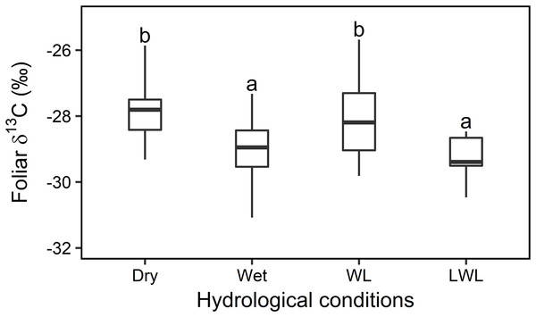 Statistical analysis for the foliar δ13C values (‰) under four different hydrological conditions in transects in 2015 and 2016.