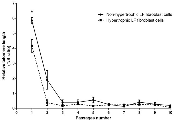 Relative telomere length of non-pathologic and pathologic LF fibroblasts cells from LSS patients aged 61, 66, and 77 years.