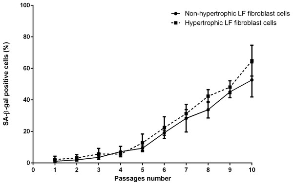 The percentage of the senescence-associated-β-galactosidase (SA-β-gal) positive of non-pathologic and pathologic LF fibroblasts cells from LSS patients aged 61, 66, and 77 years.