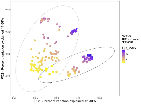 Beta diversity analysis of microbiota samples from freshwater and marine shrimps.