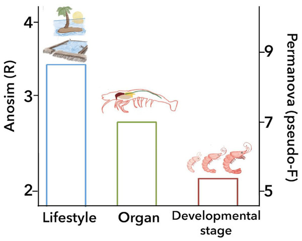 Principal biological factors that drive the microbiota variation in marine shrimps.