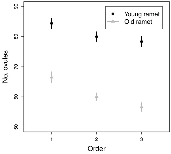 Effects of flower order and plant age on the mean (±SE) number of ovules per flower.