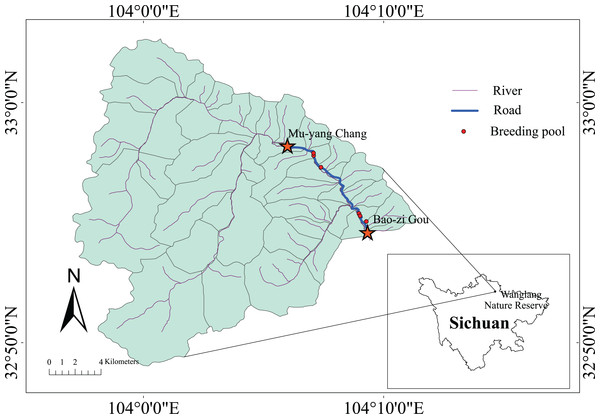 Survey area in the Wanglang NNR.