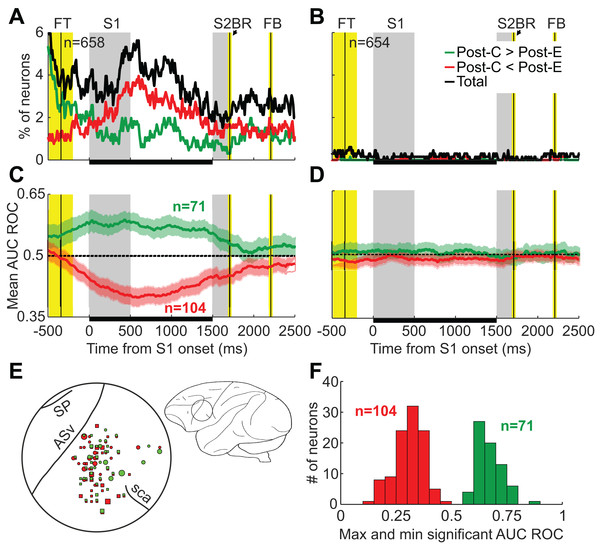 Neuronal activity shows the same pattern as behavioral performance: the outcome of the previous trial (n−1) has significant effects on neuronal activity while the outcome of trial n−2 does not affect it.