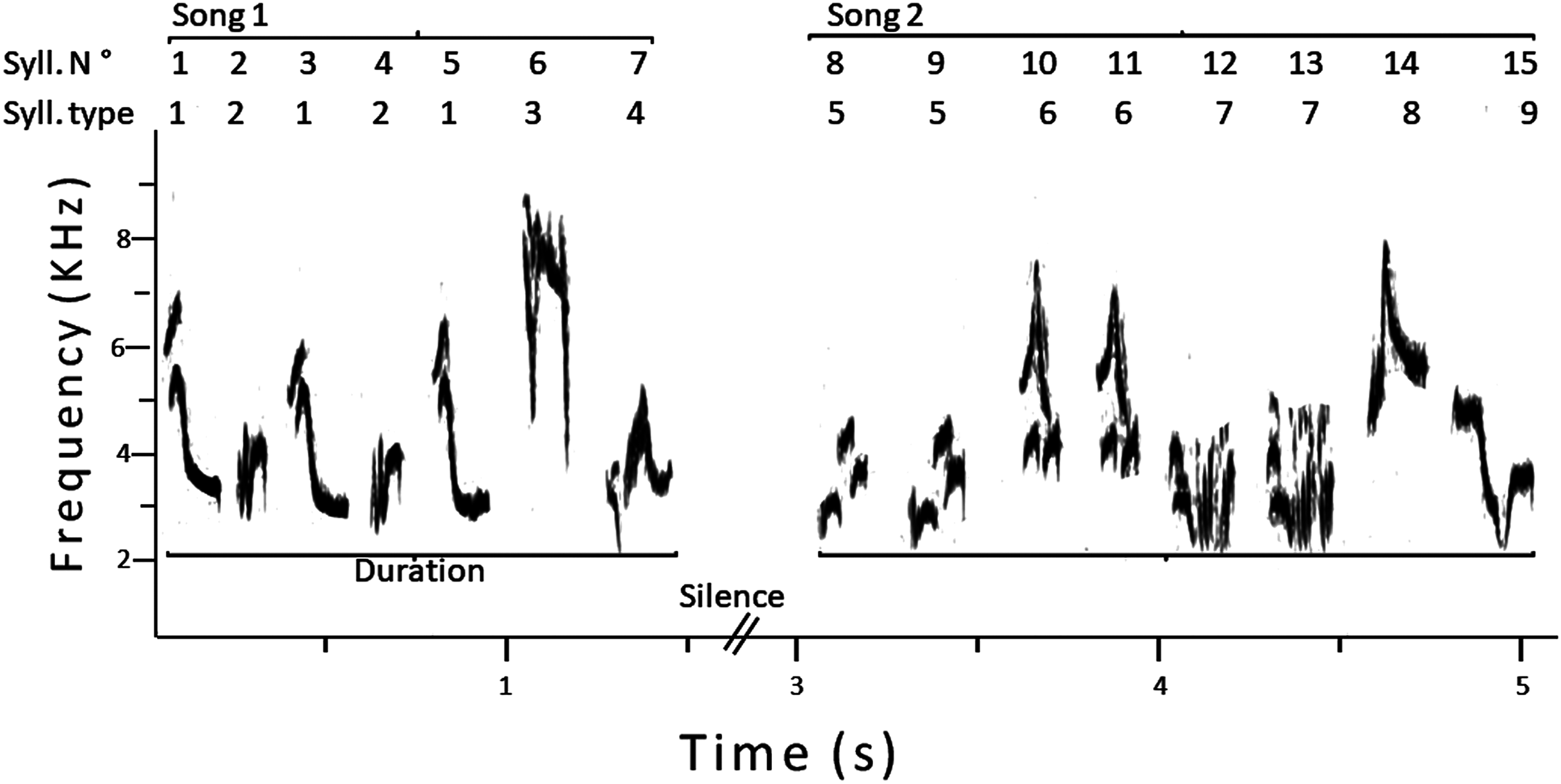 Pied De Lampe Am Pm the songs of male pied flycatchers: exploring the legacy of