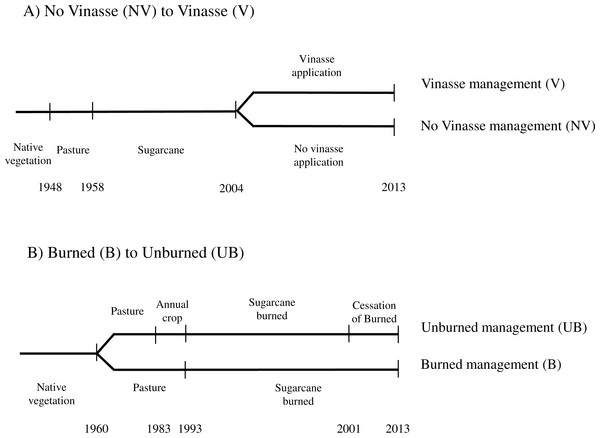 Timeline of land use and management changes at each site assessed (A) No Vinasse to Vinasse, (B) Burned to Unburned.