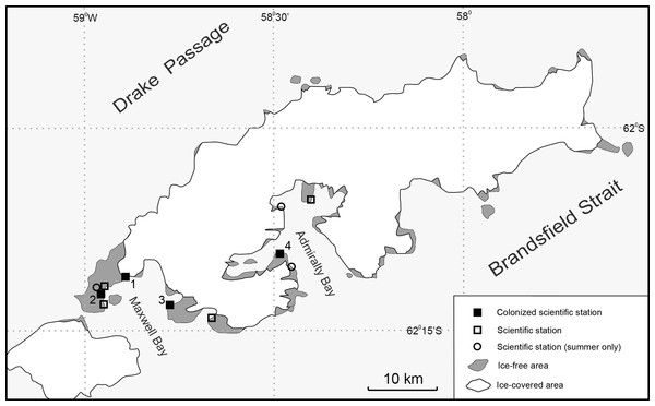 Map of King George Island with scientific stations affected by T. maculipennis (M Potocki).