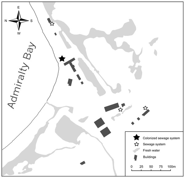 Polish Antarctic Arctowski Station on King George Island, Admiralty Bay and its sewage systems colonized by non-native flies (MPotocki).