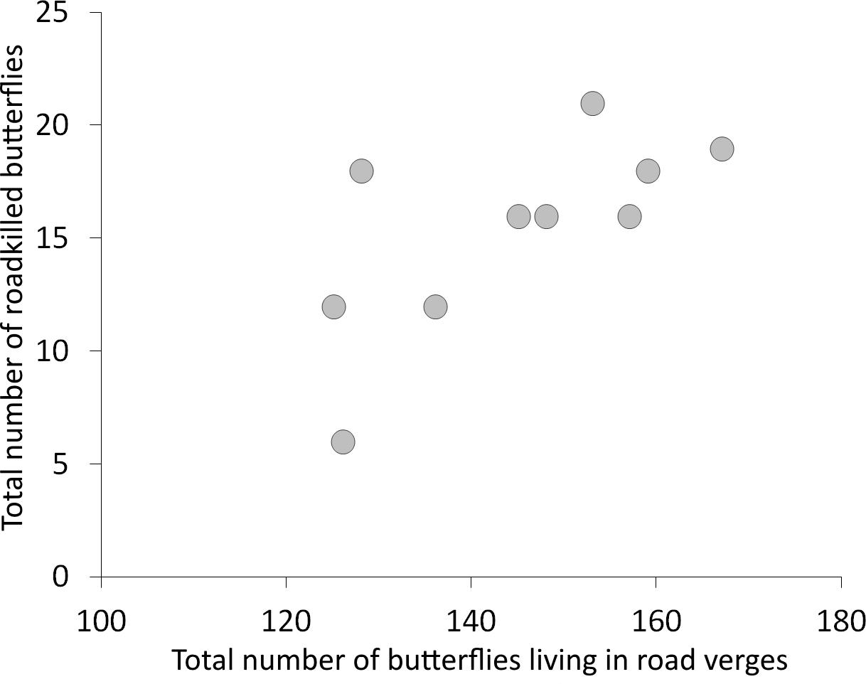 Roads affect the spatial structure of butterfly communities in
