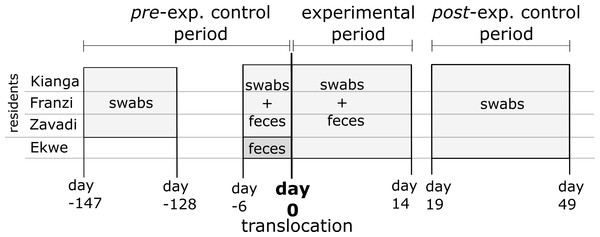 Experimental setup and sampling scheme.