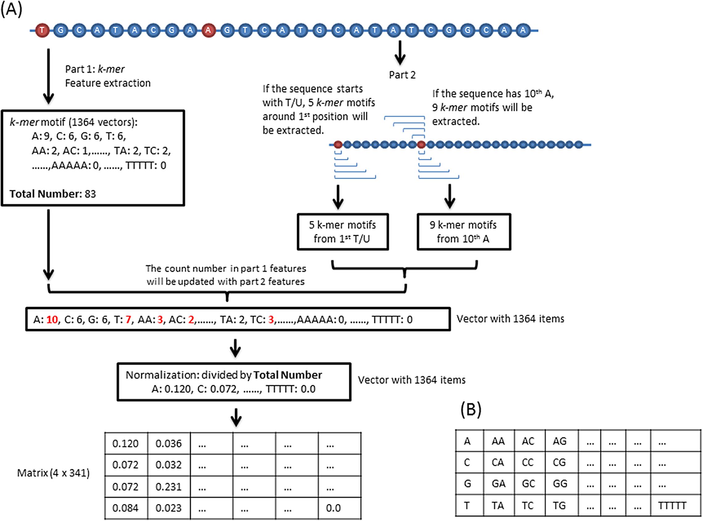 piRNN: deep learning algorithm for piRNA prediction [PeerJ]