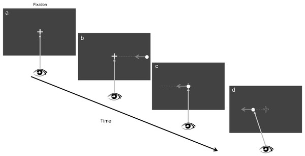 Stimulus display and procedure.