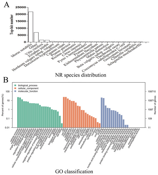 NR species distribution and GO classification of RNA-Seq data.