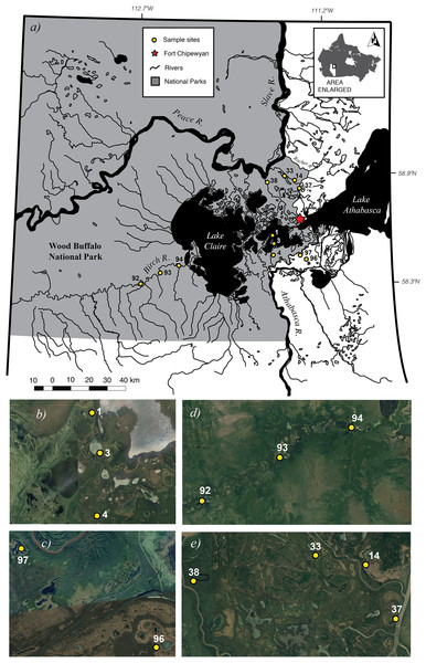 Map of 12 study sites (A). Close-up views of each of the four sub-basins Cree-Mamawi Creek (B), Embarras (C), Birch (D), and Peace (E) in the Peace–Athabasca Delta (PAD) in northeastern Alberta, Canada.