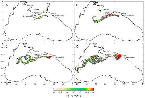 Successive phases of oil slick development under the influences of the Rim Current, NCEP winds and the Caucasian near-shore anticyclonic eddy.