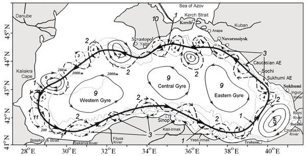 Schematic of the Black Sea circulation (modified from Korotenko (2016)).