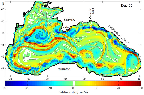 Snapshots of the relative vorticity in the Black Sea on Julian day 80 of model year 24.