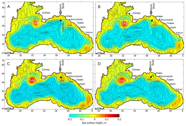 Sea surface height and streamlines indicating the evolution of the Caucasian anticyclonic meander and CNAEs embedded in the Rim Current.