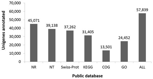 Number of unigenes annotated based on different public databases (see 'Methods' for details on databases).