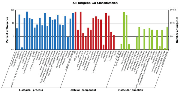 GO categories of unigenes identified from the transcriptome of seven R. arvalis oviduct samples.