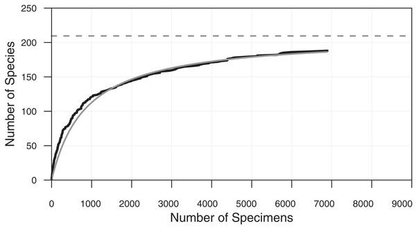 Cumulative diversity vs sample size curve and estimated true diversity for a single sample.