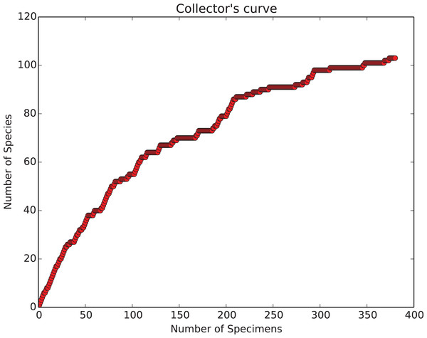 Collecting curve, showing history of cumulative diversity vs sample size.