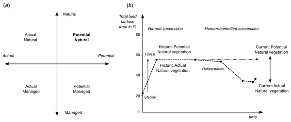Schematic explanation of differences between (A) potential and actual natural/managed vegetation, and (B) current and historic vegetation in the context of global land area.