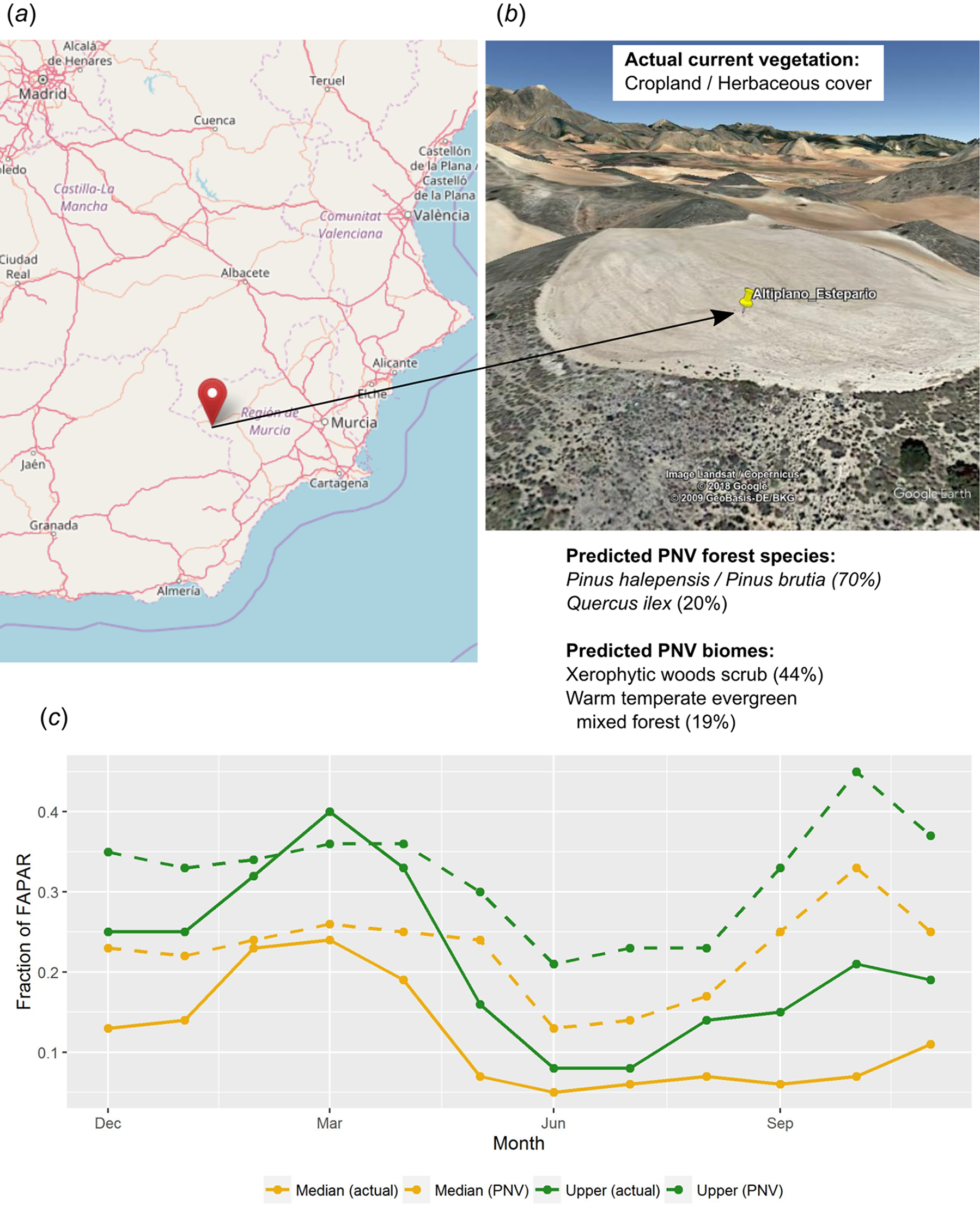 Global mapping of potential natural vegetation: an assessment of ...