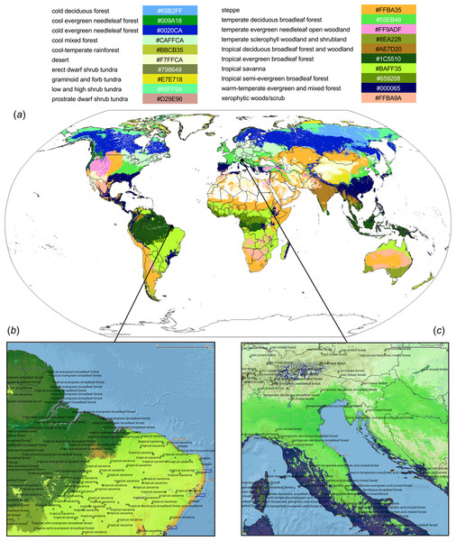 Predicted PNV distribution for (A) global biomes with a zoom in on areas in Brazil (B) and Europe (C).