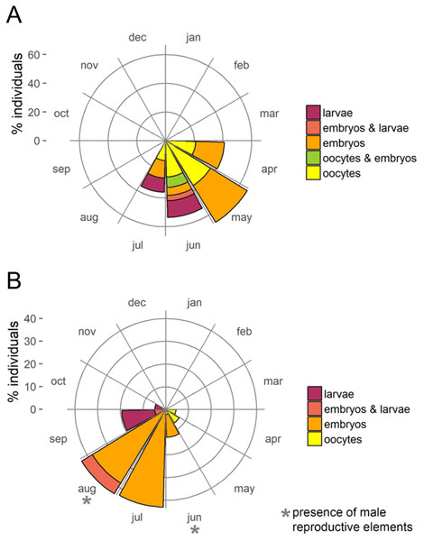 Circular plots of percent individuals with the different reproductive structures averaged over the two study years.
