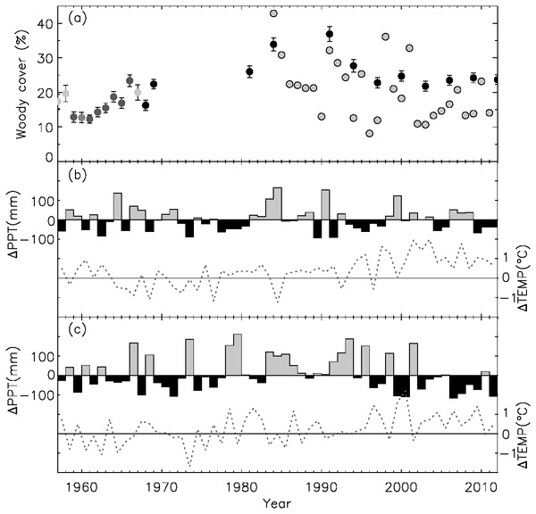Temporal dynamics of woody cover and climate.