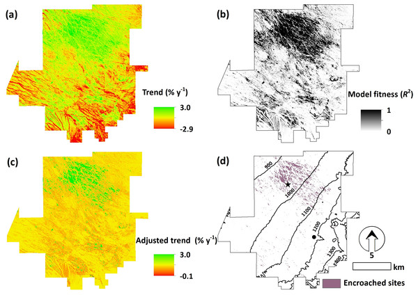 Remotely sensed trend analysis of dryland woody cover.