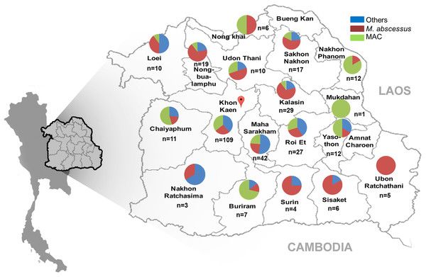 Geographical distribution of NTMs causing NTM infection Northeast Thailand.