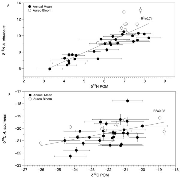 Mean (±SE) δ15N (A) and δ13C (B) values of Amphibalanus eburneus tissue at a site as a function of mean (±SE) δ15N and δ13C values of particulate organic matter (POM) at the same site.