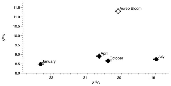 Mean (±SE) δ15N and δ13C values of Amphibalanus eburneus for each season from January to October of 2015 and during an Aureoumbra lagunensis bloom in January 2016.
